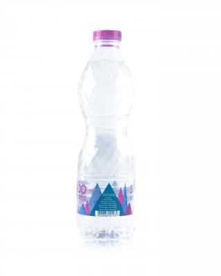 Agua S. Martinho 饮用水 0.5 L